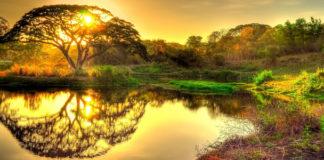 значение каждого действия,святилище,духовных мирах,миры,нефеш а-хаим, подобие, элоким