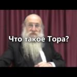 <b>Что такое Тора? </b>